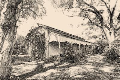 Building in Waratah NSW Australia esketched by Paul Rappoport June 2015